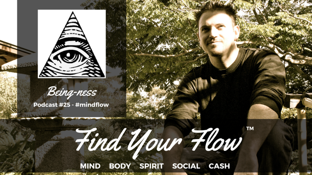 Find Your Flow Podcast #25 Winston Widdes #mindflow