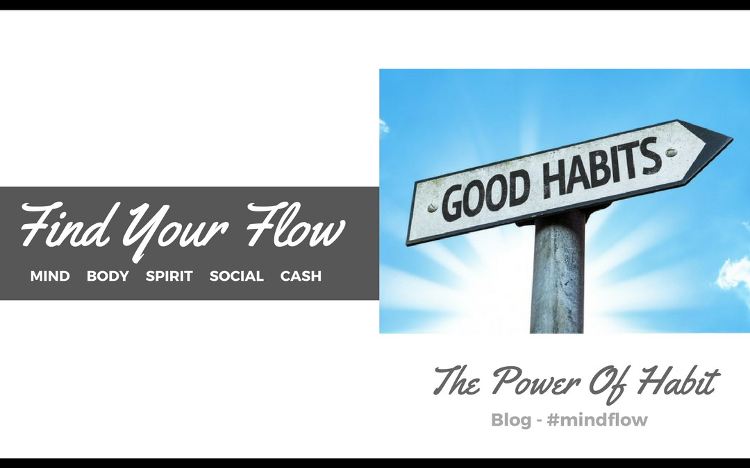 The Power of Habit:  Become Successful in Life by Forming Habits