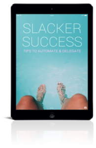 Slacker Success ebook