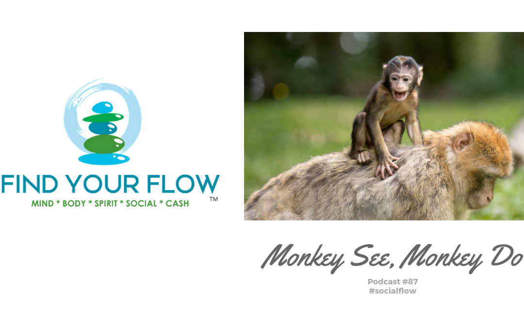 Find Your Flow Podcast #87 – Monkey See, Monkey Do – #spiritflow